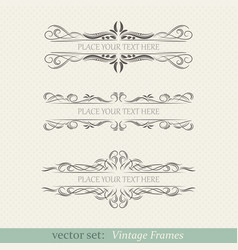 ornate frames vector image