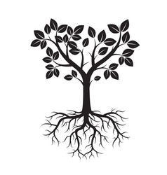 shape of black tree and roots vector image vector image