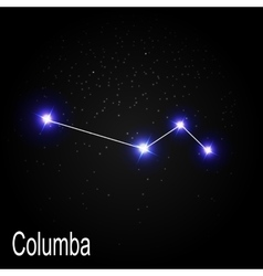 Columba constellation with beautiful bright stars vector