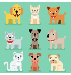 Puppy and kitten pet flat icons vector