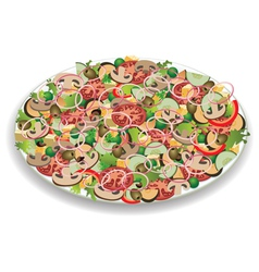 vegetable salad vector image vector image