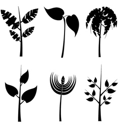 Plants silhouette vector