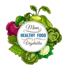 Healthy vegetable food cabbages poster vector