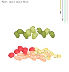 Mung bean with vitamin k vitamin b vitamin c vector