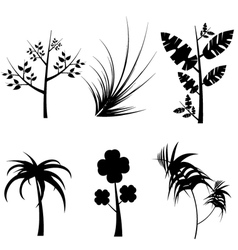 plants silhouette vector image vector image
