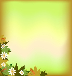 Abstract background with maple leaves and flowers vector