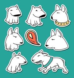 Dogs characters pitbull funny animals cartoon vector