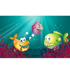 Piranhas under the sea with corals vector image