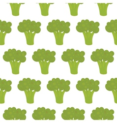 Broccoli seamless pattern vector