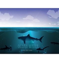 Shark underwater vector