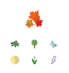 Flat icon ecology set of berry monarch tree and vector