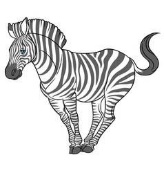 Cute naturalistic zebra vector