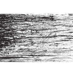 Distress wooden texture vector