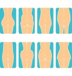 female buttocks vector image vector image