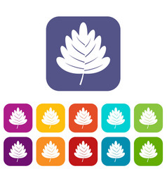 Hawthorn leaf icons set flat vector