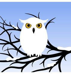 White owl vector