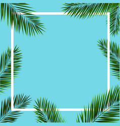 Frame with palm trees vector