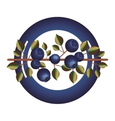 Dish with blueberry branch and leafs vector