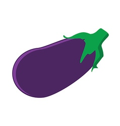 Fresh vegetable eggplant vector image vector image