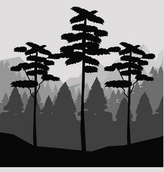 monochrome background of landscape of forest with vector image vector image