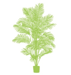 Room plant silhouette vector