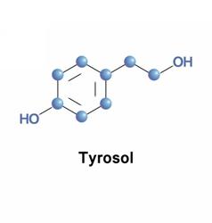 Tyrosol phenylethanoid molecule vector