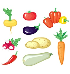 vegetable color vector image