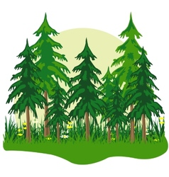 Fur wood vector image vector image