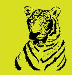 Tiger on yellow background vector