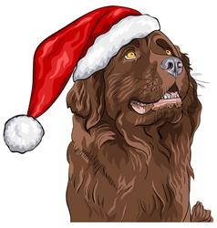 German shepherd in Santa Claus hat vector image