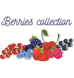Set three of beautiful flat berries vector