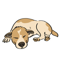 Dog sleep vector