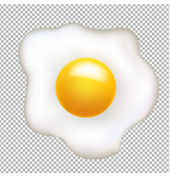 fried egg isolated vector image vector image