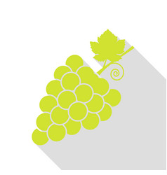 grapes sign pear icon with flat vector image
