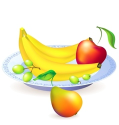 Plate of fruits vector
