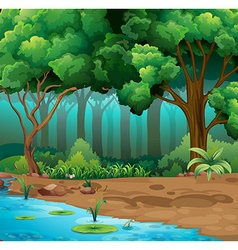 River run through the jungle vector