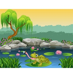 Cartoon frog catching fly on the lily water vector image vector image