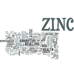 Zinc text word cloud concept vector