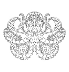 Octopus ethnic patterned vector