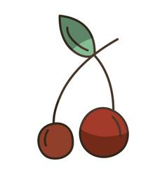 Delicious fresh cherry organic fruit vector