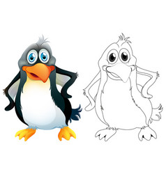doodle animal character for penguin vector image