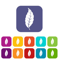 Narrow toothed leaf icons set flat vector