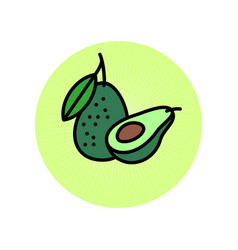 Avocado flat avocado icon vector