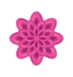 Flower icon abstract floral design rose vector