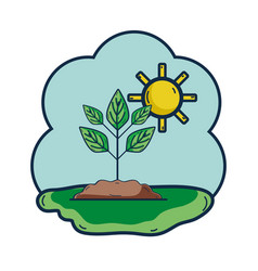 Plant with ground and sun weather vector