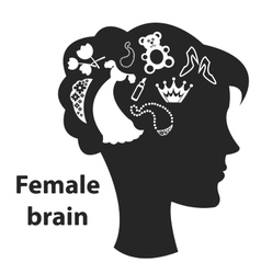 Female brain vector image vector image
