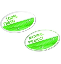 fresh natural labels and stickers vector image