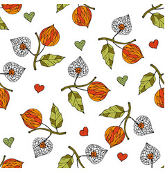 Seamless autumn pattern with physalis vector