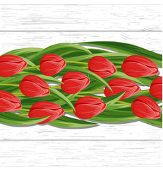 Spring background with blooming tulip vector