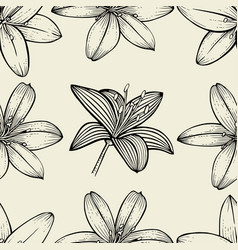 pattern of lily flowers vector image